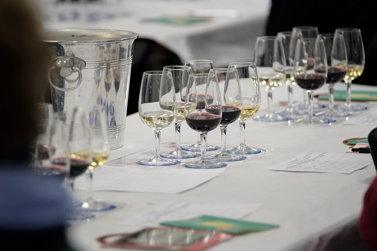 Taste wine with the experts